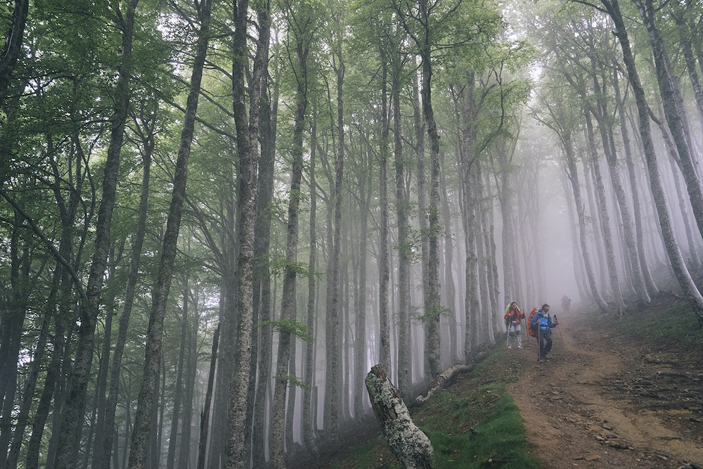Three people backpacking down a steep dirt trail with mist in the trees behind them.