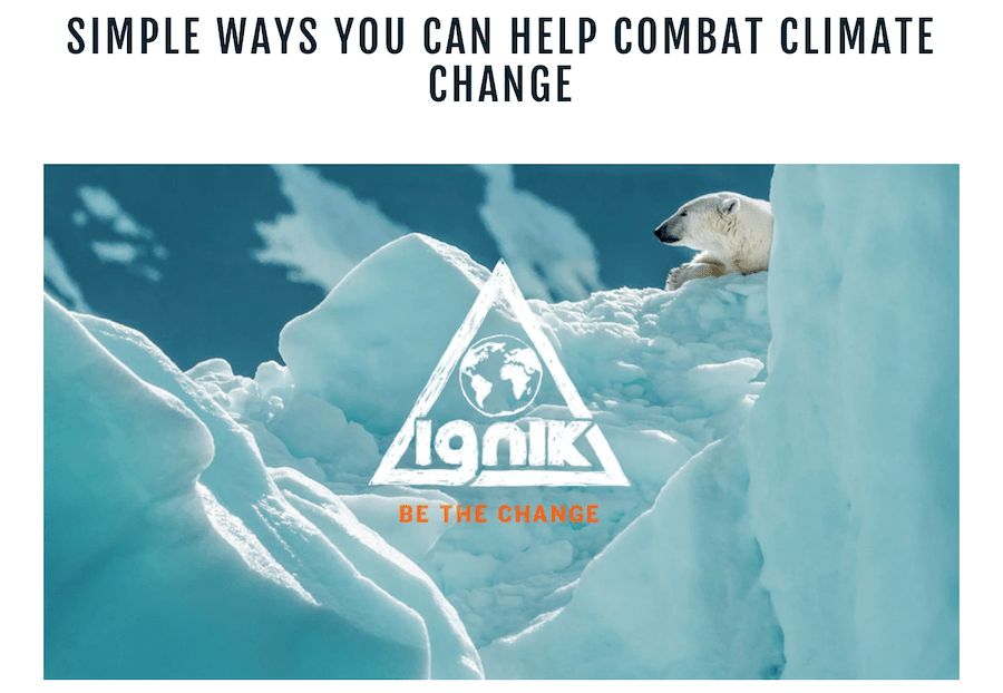A glacier with a polar bear on it overlaid with the Ignik Be the Change logo.
