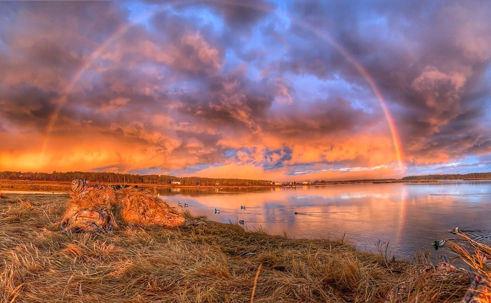 Ducks on a lake with a sunrise and rainbow in background
